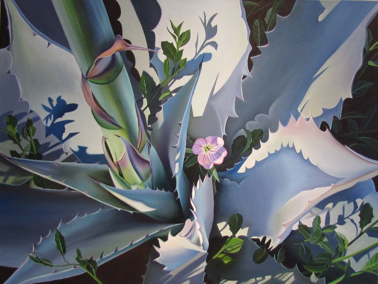 "Dyana Hesson - ""Beauty and the Beast""  Agave and Primrose, Wildflower garden, DBG"