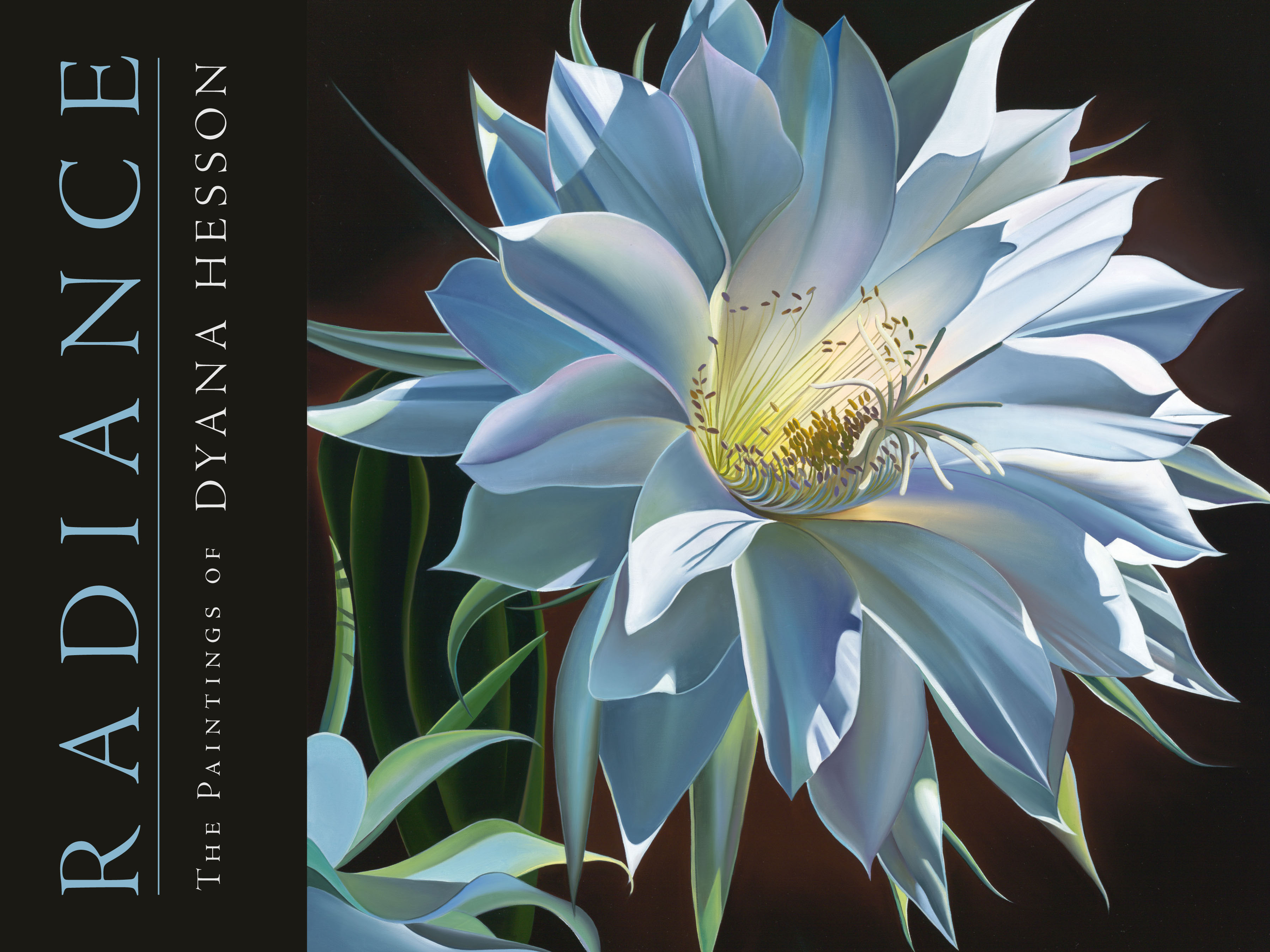 "Dyana Hesson - ""Radiance- The Paintings of Dyana Hesson (Book)"""