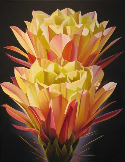 "Dyana Hesson - ""Glorious, Two Yellow Cactus Blooms"